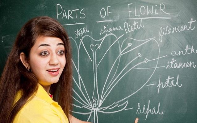 Class 12 Biology